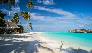 Malediwy – last minute, czyli dlaczego warto jak najszybciej odwiedzić ten archipelag