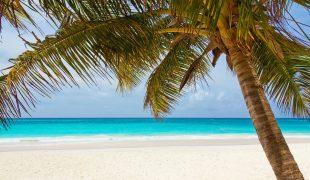 Luksusowe wakacje na Karaibach