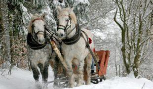 Zima w Karpaczu – na jakie atrakcje w okolicy można liczyć?