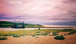 Dziwnów - najpiękniejsza nadmorska miejscowość dla miłośników przyrody
